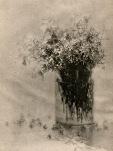 Lilacs in a Glass - Alfred Steiglitz, 1909. eulaliavox.tumblr