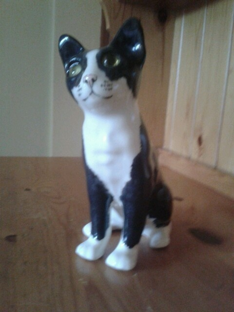 107 Best Images About Winstanley Cats On Pinterest