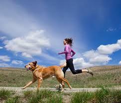 Drie keer per week een 10-minuten trainingverbetert uithoudingsvermogen en verlaagt de bloeddruk. Van de 10-minuten training zijn slechts enkele minuten intensief. Dit meldt medisch journal PLOS O…