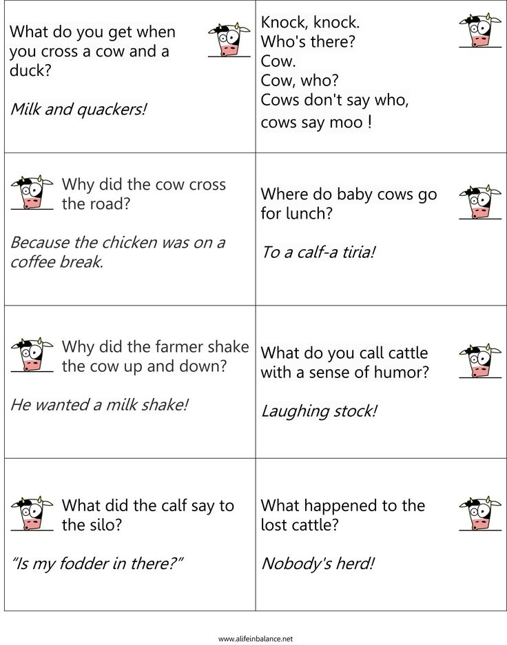 35 Best Cow Jokes Images On Pinterest Funny Cows Corny