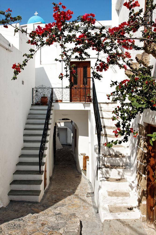 VISIT GREECE| Bougainvilles on#skyros#visitgreece#greece#islands