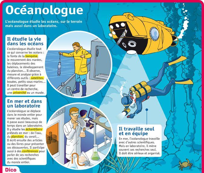 Fiche exposés : Océanologue