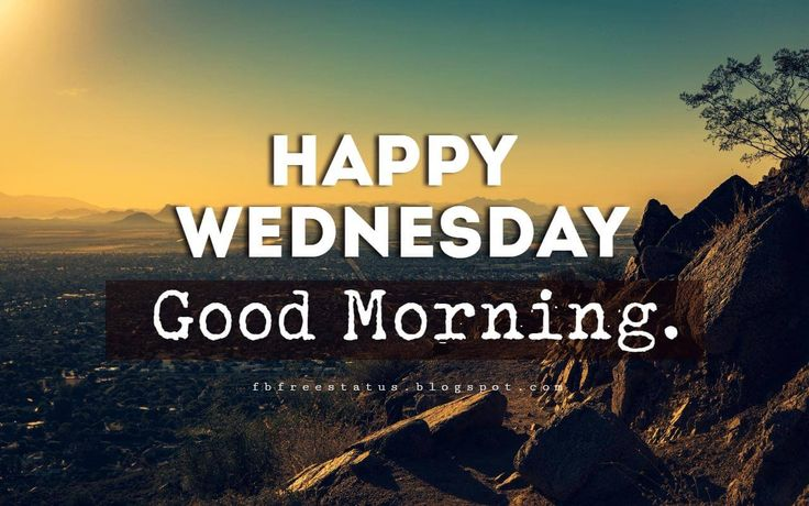 Happy Wednesday Pictures, Happy Wednesday Good Morning.