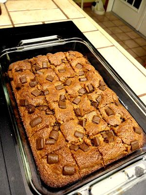 Easy Thanksgiving Dessert from Hungry Gator Gal: Double Chocolate Gingerbread Nut Bars