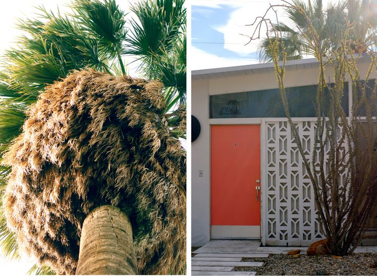 Best Palm SpringsSo Much More Images On Pinterest - A mid century desert oasis in palm springs