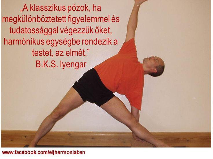 B.K.S. Iyengar www.eljharmoniaban.hu