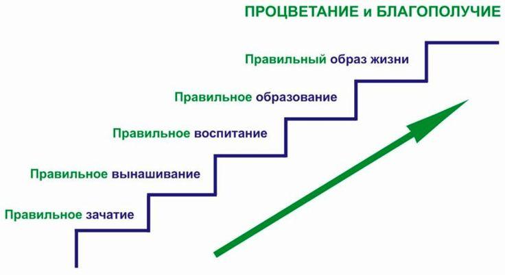 А какая должна быть позитивная диаграмма? Та диаграмма, которая ведёт к процветанию и благополучию. Это правильное зачатие, правильное вынашивание, правильное воспитание, правильное образование и правильный образ жизни. На выходе мы имеем процветание и благополучие. Наше общество не занимается этим, потому что оно оторвало себя от Бога, и цели общества совершенно другие. http://z-n.center/news/2015/06/16/o_Boge_i_nravstvennosti.htm
