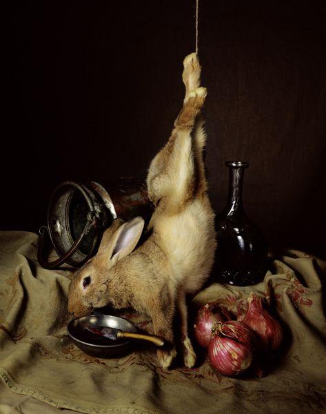 Nature morte au lapin by Guido Mocafico