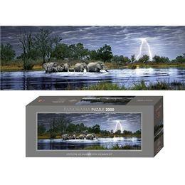 Herd of Elephants, E.Humboldt, puzzle, 2000 elementów