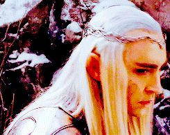 """""""My king!"""" One of the members of Taurwen's company called. """"Lady Eleniel is hurt! When the dwarves brought her back she was unconscious and pale."""" King Thranduil looked at the soldier in horror """"no..."""" He said to himself."""