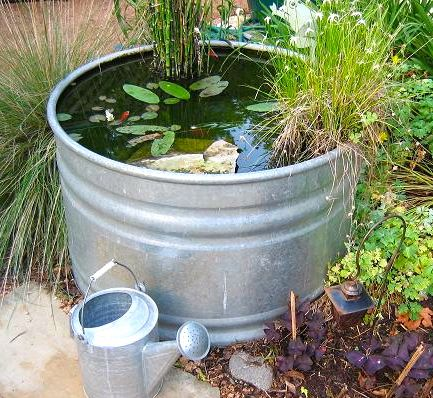 34 best images about galvanized tub water gardens on for Garden pond tub