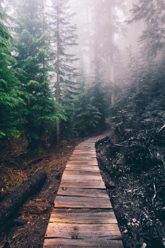 North Cascades National Park- Washington.
