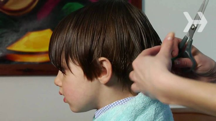 How Cut a Boy's Hair :  Use haircutting scissors - Sit him down - Occupy him - Wet his hair - Begin at the neck - chop the top - Trim the bangs - Do the sides - See how he looks  (video)