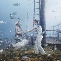 Fotografia Subaquática  por Andreas Franke