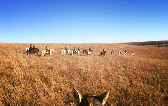 The Winter Horseback Riding Trail In Kansas That's Pure Magic