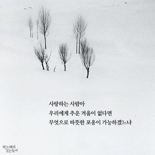 사랑하는 사람아 우리에게 겨울이 없다면 무엇으로 따뜻한 포옹이 가능하겠느냐 무엇으로 우리 서로 깊어질 수 있겠느냐 이 추운 떨림이 없다면 꽃은 무엇으로 피어나고 무슨 기운으로 향기를 낼 수 있겠느냐 나 언 눈 뜨고 그대를 기다릴 수 있겠느냐 눈보라 치는 겨울밤이 없다면 추워 떠는 자의 시린 마음을 무엇으로 헤아리고 내 언 몸을 녹이는 몇 평의 따뜻한 방을 고마워하고 자기를 벗어버린 희망 하나 커 나올 수 있겠느냐 아아 겨울이 온다 추운 겨울이 온다 떨리는 겨울 사랑이 온다 - 박노해, '겨울 사랑', 『그러니 그대 사라지지 말아라』
