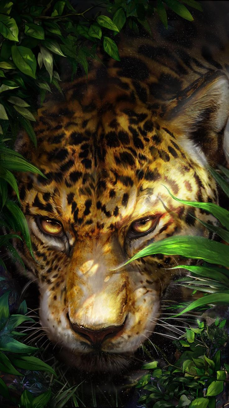 Leopard hid in the shrubs wonderful live wallpapers - Jaguar wallpaper for android ...