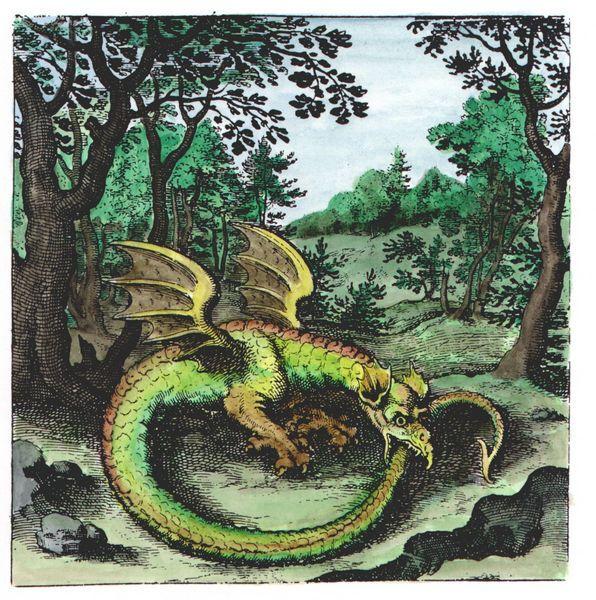 183 Best Mythological Messes Redux Images On Pinterest: 183 Best Ouroboros Images On Pinterest
