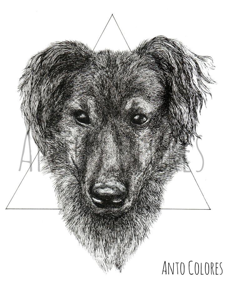 #dog #perro #puppy #illustration #ilustracion #antocolores  www.instagram.com/anto.colores https://www.facebook.com/AntoColores/?ref=aymt_homepage_panel
