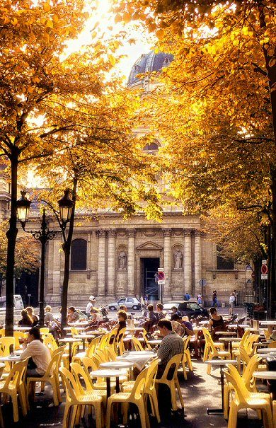 Place de la Sorbonne - Paris 5e | More here: http://mylusciouslife.com/pictures-of-yellow/