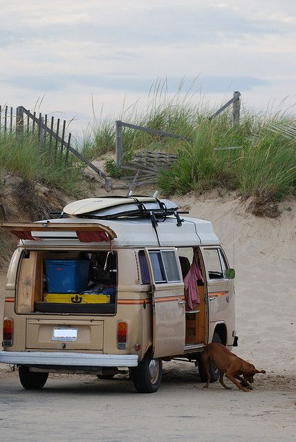 surf buddy and a vanagon. I likuh da vanuh.