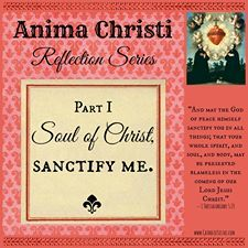 Line-by-Line prayer reflection: Anima Christi, Part 1{Catholic Sistas}: When I first thought about taking part in this series, I was a little nervous. The Anima Christi? I know I've heard of it before, but I really don't know the prayer, and I'm pretty sure I haven't even read the whole thing through before now! (that's mildly embarrassing for a cradle Catholic with 12 years of Catholic schooling to admit, but there it is.) ::click to read more::