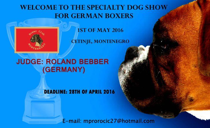 Specijalizovana izložba za nemačke boksere-01.05.2016. Cetinje (Crna Gora)