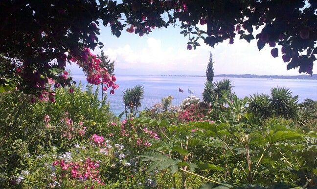 Colors of Korfu