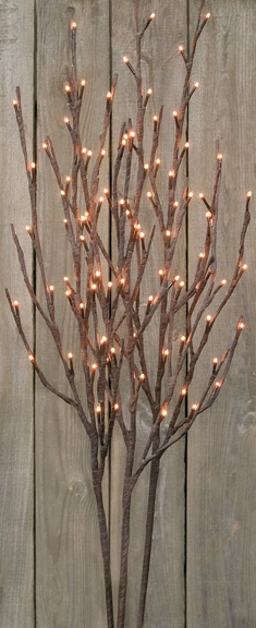 Primitive Twig Lights -- got these for my room! (:
