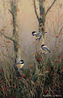 7 of Arts: Τα όμορφα πουλιά Σαμ Timm.