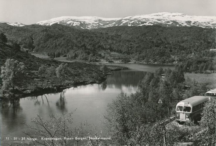 Kvamskogen  #history #svenkvia #norge #norway #car #kamskogen #bergen #norheimsund
