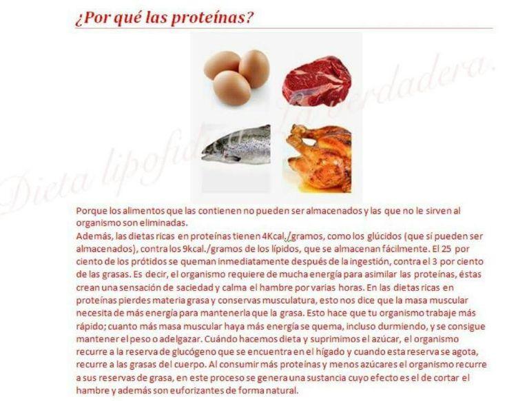 Por que proteinas?