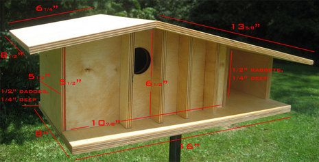 Curbly Video Podcast: Build Your Own Mid-Century Modern Birdhouse