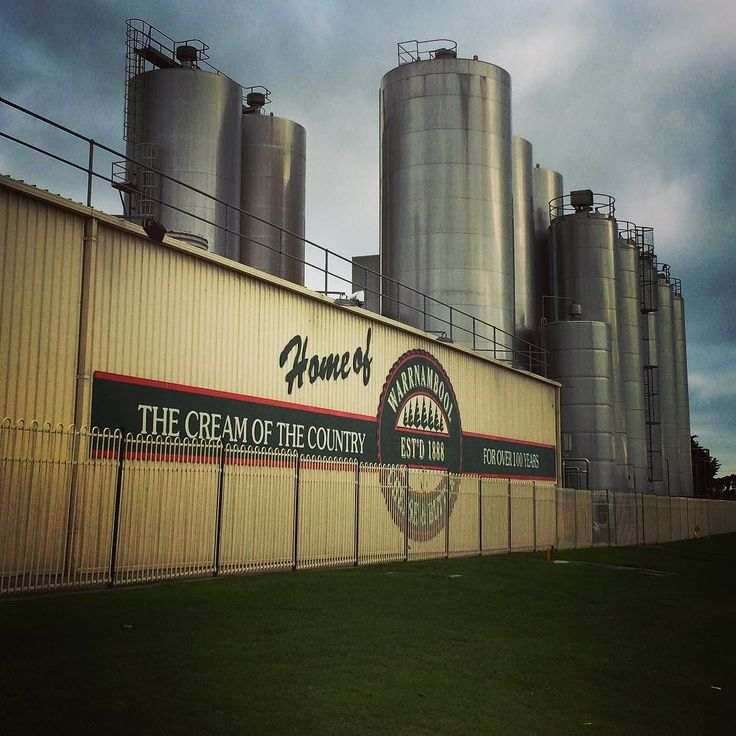 Down at the factory today in #Allansford about 10km out of #Warrnambool on #TheGreatOceanRoad where #SungoldJersey and #SungoldFresh is processed from the best farms in the region. #Melbourne #Victoria #melbournecafe #coffee #cafe #dairy #quality by sungoldmilk