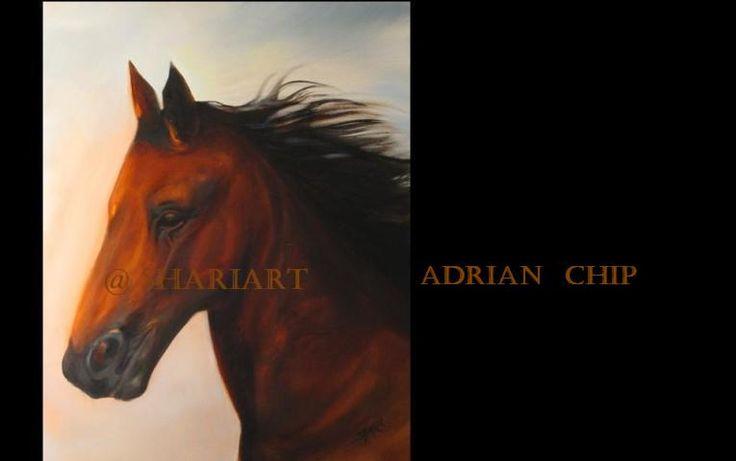 Adrian Chip 2010