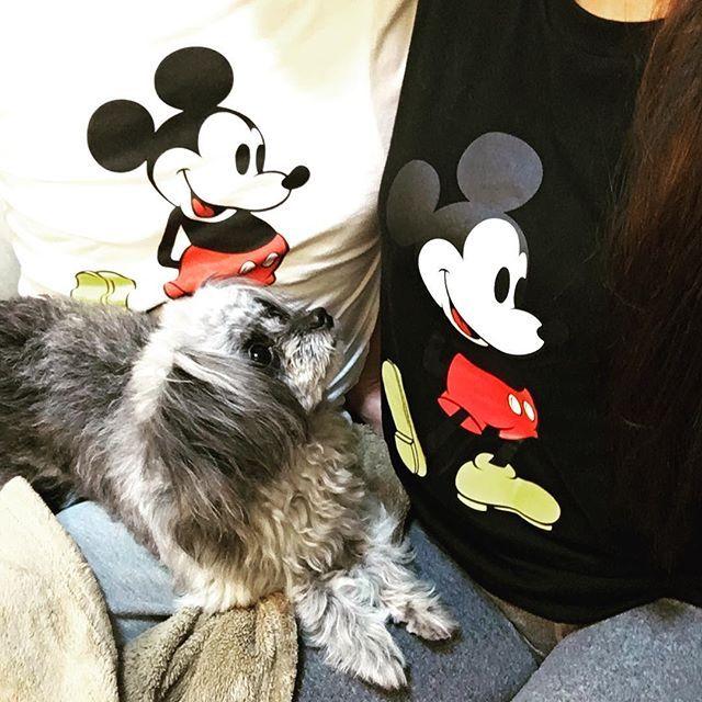 お揃いTシャツwithパムさん♡ #ミッキー#ミッキーマウス#ミッキーtシャツ#お揃い#おそろい#おそろいコーデ#愛犬#やんちゃ盛り#mickeymouse#miceycode#dogstagram