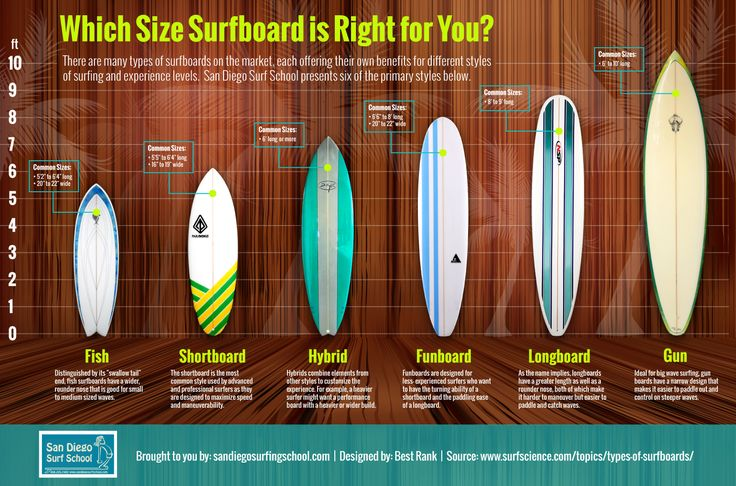 Which surfboard is right for you More