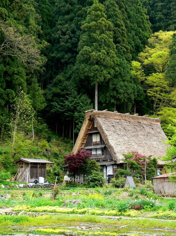 The lovely Japanese countryside