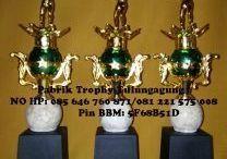 Trophy Marmer Tulungagung / Pabrik trophy merupakan layanan online dan offline yang bergerak di bidang piala dan sparepart piala dengan berbagai model yang cantik dan ellegan.Yang memiliki dari jenis plastik dan marmer. / by Ana Pabrik