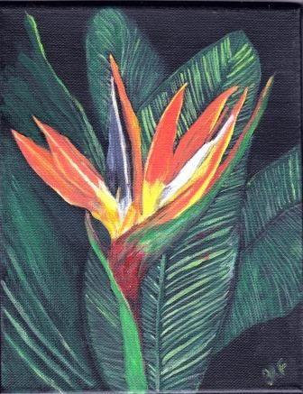 Bird of Paradise - acrylic