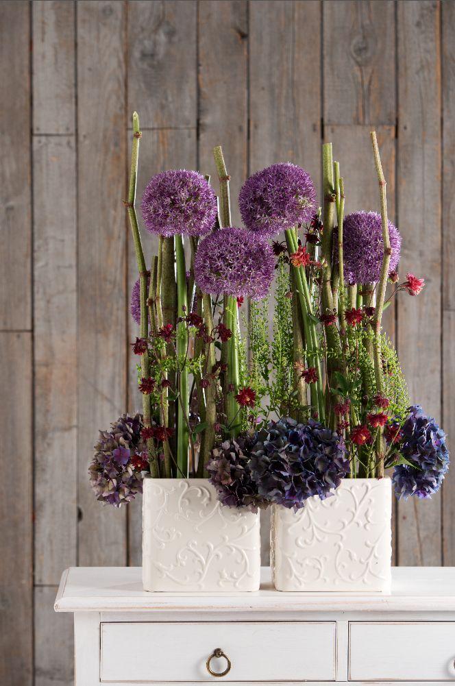 hortensien akeleien hirtent schel zierlauch japankn terich heft juni 2014 foto uzwei u. Black Bedroom Furniture Sets. Home Design Ideas