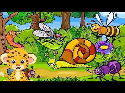 Adivinanzas para niños de animales: los insectos - YouTube