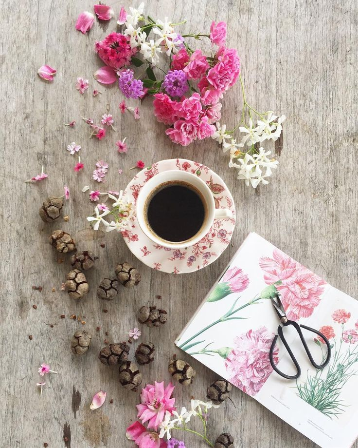 Coffee Time ☕️ Good morning dear followers.day !!! #coffeeandseasons #teaandseasons ✨#bonjour #cettesemainesurinstagram #découvrirensemble  #vzcomood #click_vision  #igworldclub  #tv_living  #huffpostgram  #coffeelovers  #coffeelover #flowers  #stilllifeisreallife #sunday_sundries  #petalsandprops #feelfreefeed  #tv_living