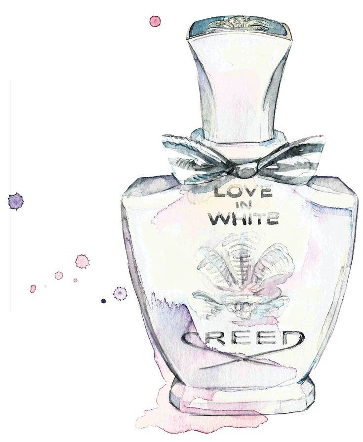 Creed Love in White at WORLD Beauty – illustrated by Sarah Larnach