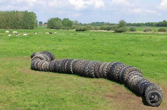Rups van autobanden. Kunst aan de Maas