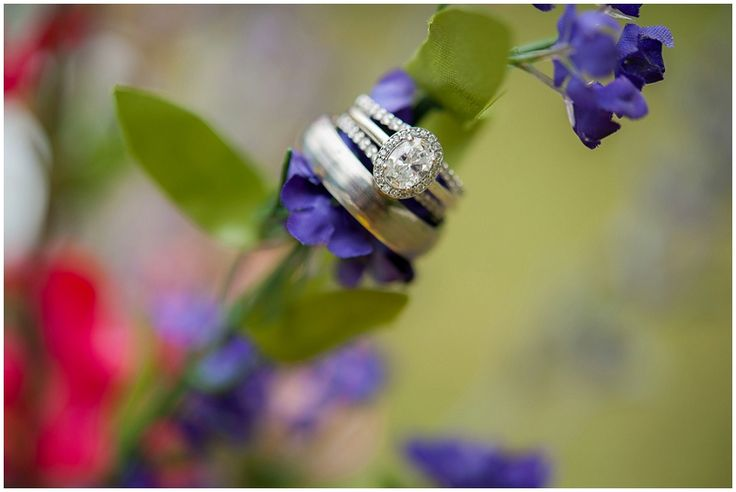 wedding rings //  Photography: Southern Jewel Photography • Rentals: ABC Party Rentals • Venue: Paris Mountain State Park