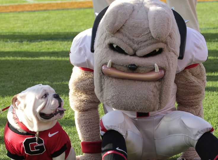 UGA made the 15 for '15: College football's best mascots