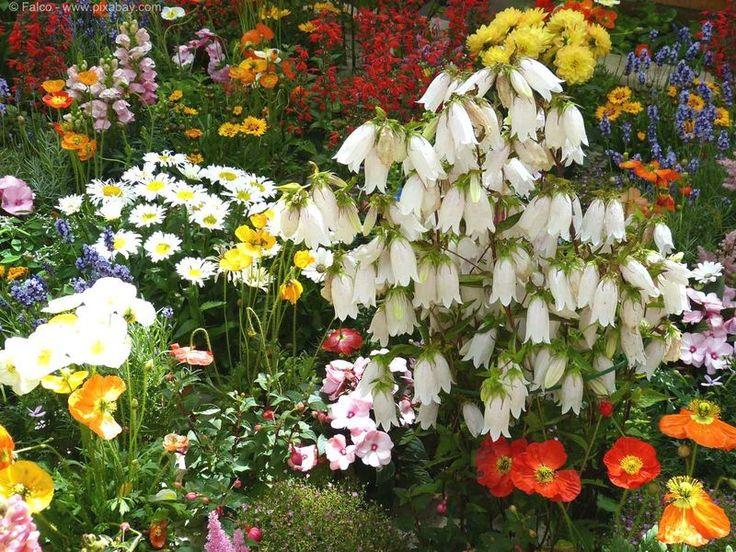 Wer träumt nicht von einem Cottage Garden? Wir haben zumindest einen in unserem Blog.