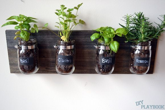 How to Create a Mason Jar Organizer. I love this for bathroom storage and indoor plants. Mason jars and hose clamps.