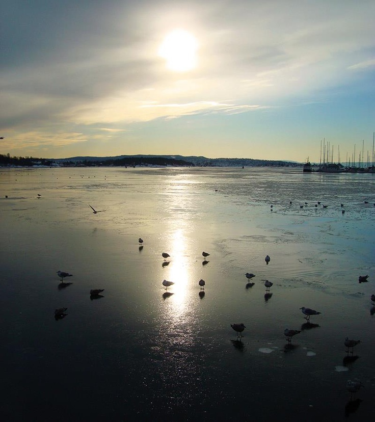 Pictures: World oslo norway scandinavia Sweden Europe EU photo foto US